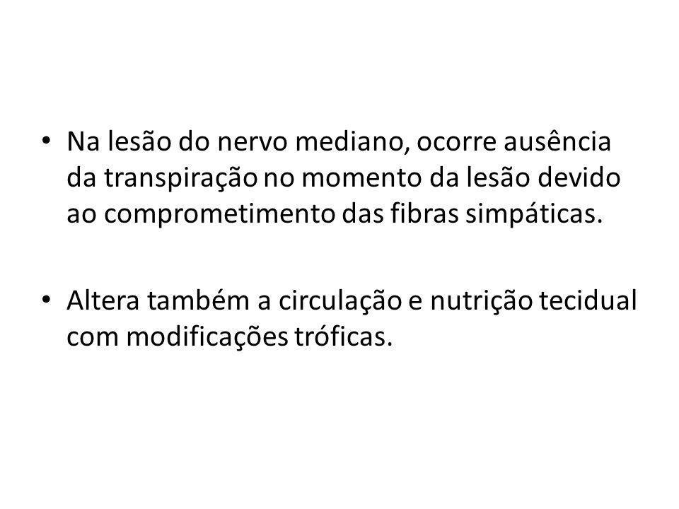 Na lesão do nervo mediano, ocorre ausência da transpiração no momento da lesão devido ao comprometimento das fibras simpáticas. Altera também a circul