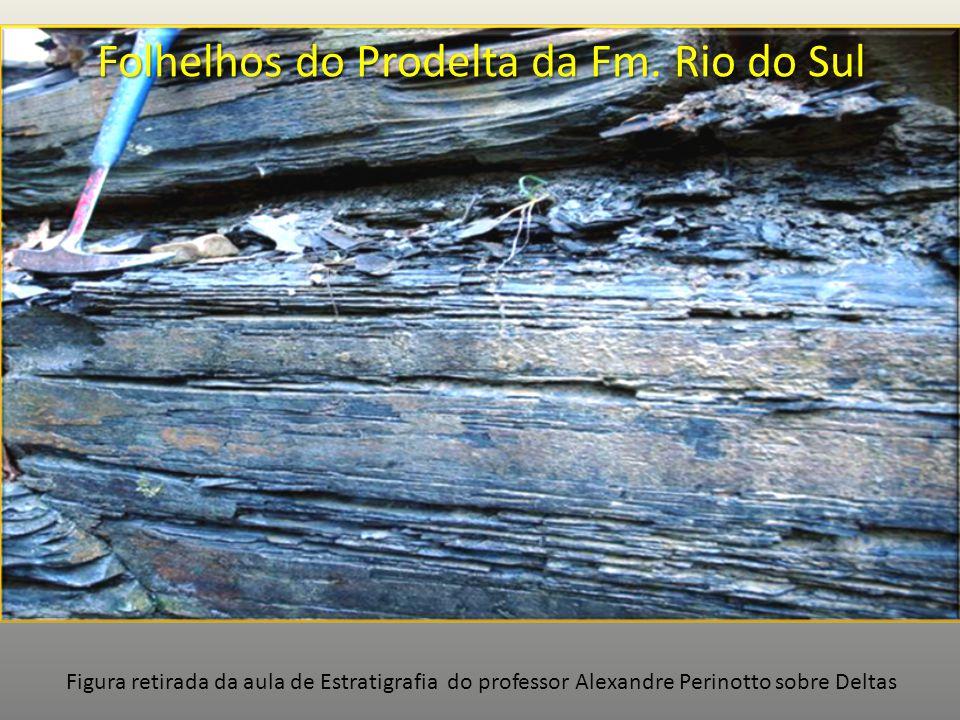 Folhelhos do Prodelta da Fm. Rio do Sul Figura retirada da aula de Estratigrafia do professor Alexandre Perinotto sobre Deltas