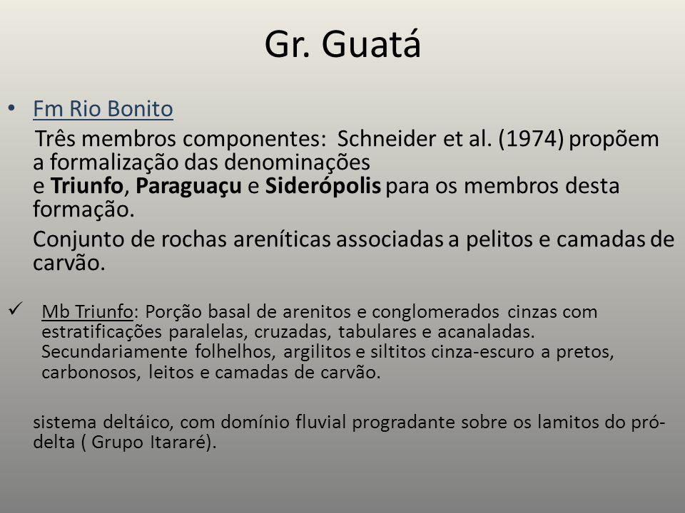Gr.Guatá Fm Rio Bonito Três membros componentes: Schneider et al.