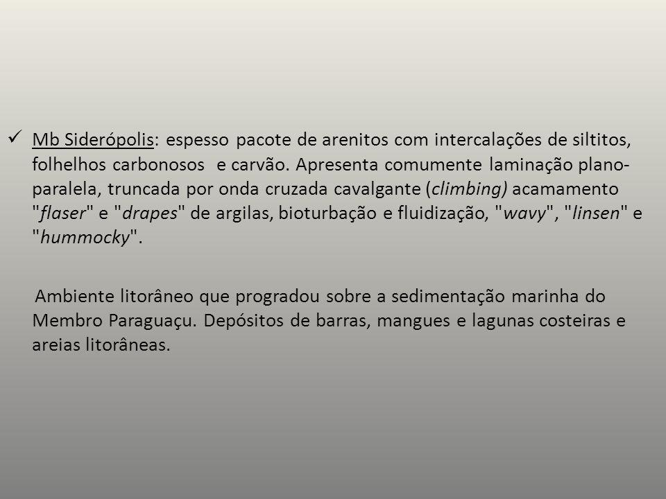 Mb Siderópolis: espesso pacote de arenitos com intercalações de siltitos, folhelhos carbonosos e carvão.