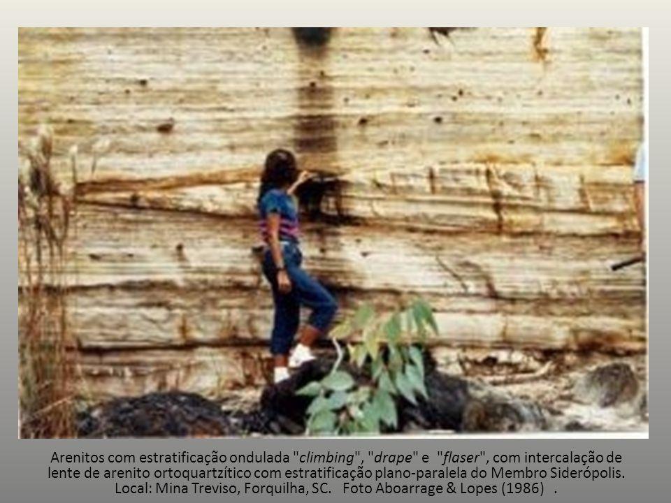 Arenitos com estratificação ondulada climbing , drape e flaser , com intercalação de lente de arenito ortoquartzítico com estratificação plano-paralela do Membro Siderópolis.