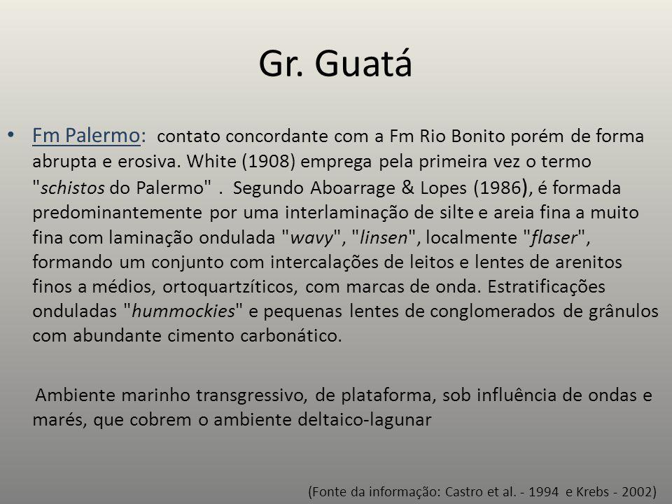 Gr. Guatá Fm Palermo: contato concordante com a Fm Rio Bonito porém de forma abrupta e erosiva. White (1908) emprega pela primeira vez o termo