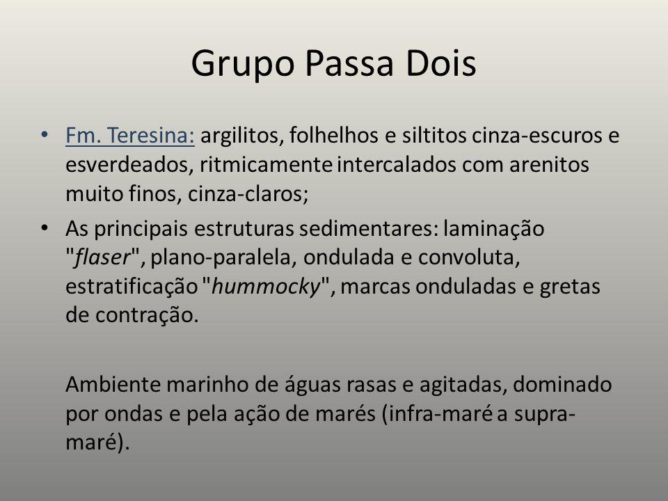 Grupo Passa Dois Fm. Teresina: argilitos, folhelhos e siltitos cinza-escuros e esverdeados, ritmicamente intercalados com arenitos muito finos, cinza-