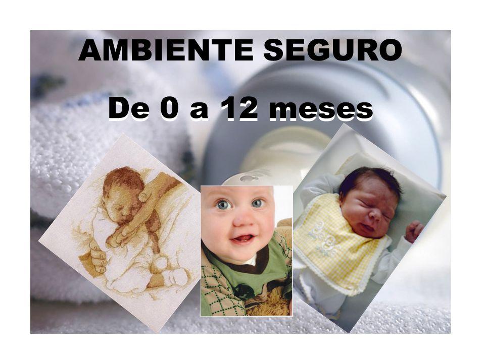 AMBIENTE SEGURO De 0 a 12 meses