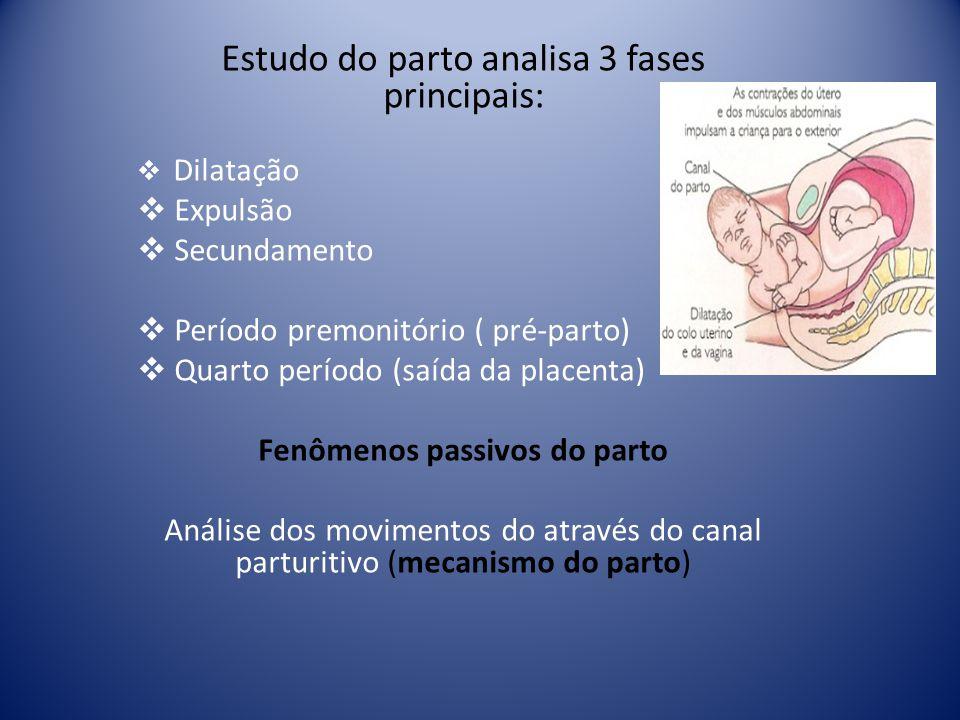 Estudo do parto analisa 3 fases principais: Dilatação Expulsão Secundamento Período premonitório ( pré-parto) Quarto período (saída da placenta) Fenôm