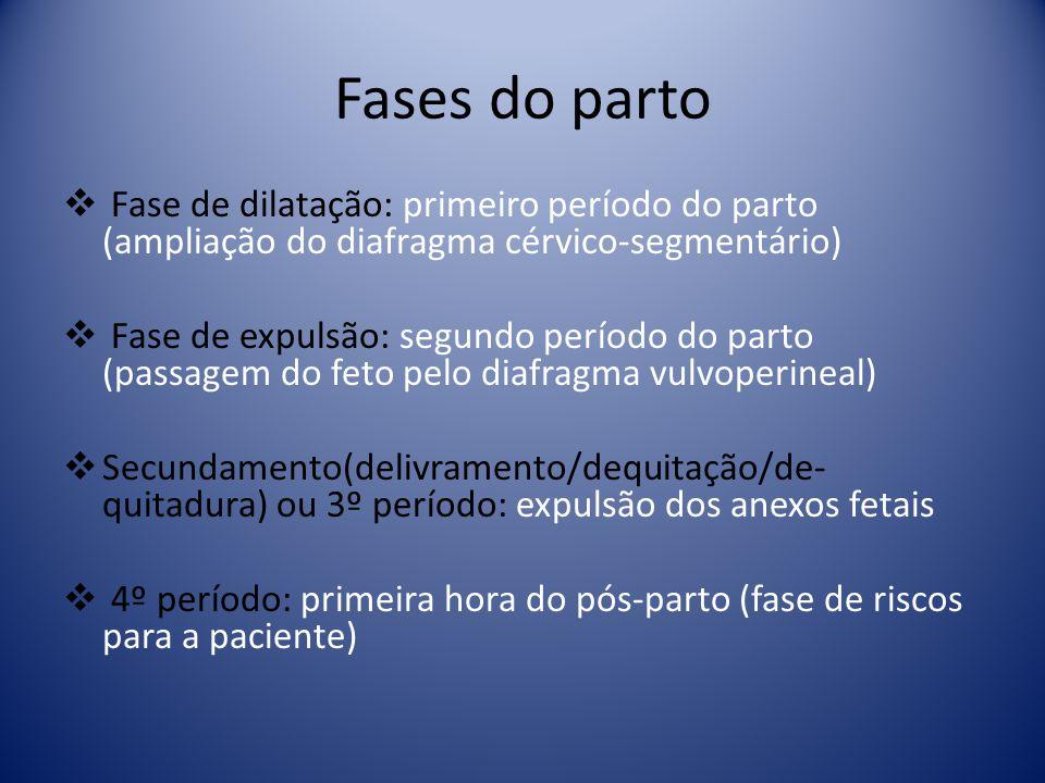 Fases do parto Fase de dilatação: primeiro período do parto (ampliação do diafragma cérvico-segmentário) Fase de expulsão: segundo período do parto (p