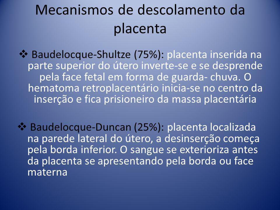 Mecanismos de descolamento da placenta Baudelocque-Shultze (75%): placenta inserida na parte superior do útero inverte-se e se desprende pela face fet