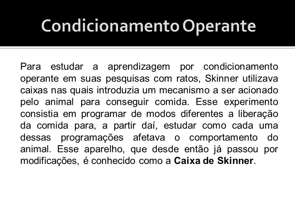 Para estudar a aprendizagem por condicionamento operante em suas pesquisas com ratos, Skinner utilizava caixas nas quais introduzia um mecanismo a ser