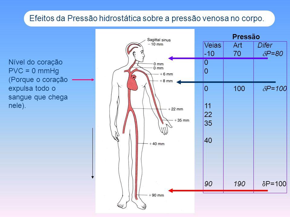 Efeitos da Pressão hidrostática sobre a pressão venosa no corpo. Pressão Veias Art Difer -1070 P=80 0 0100 P=100 11 22 35 40 90190 P=100 Nível do cora