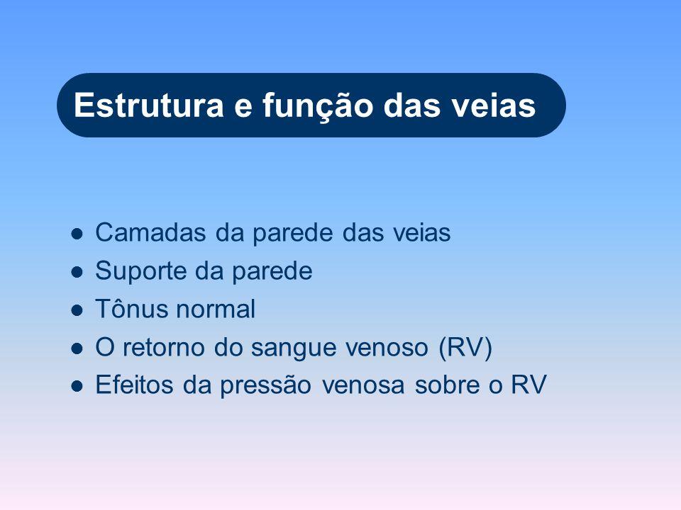 Estrutura e função das veias Camadas da parede das veias Suporte da parede Tônus normal O retorno do sangue venoso (RV) Efeitos da pressão venosa sobr