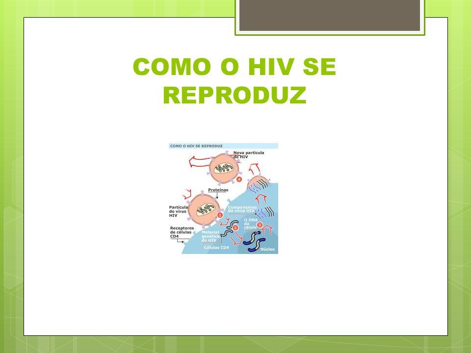 COMO O HIV SE REPRODUZ