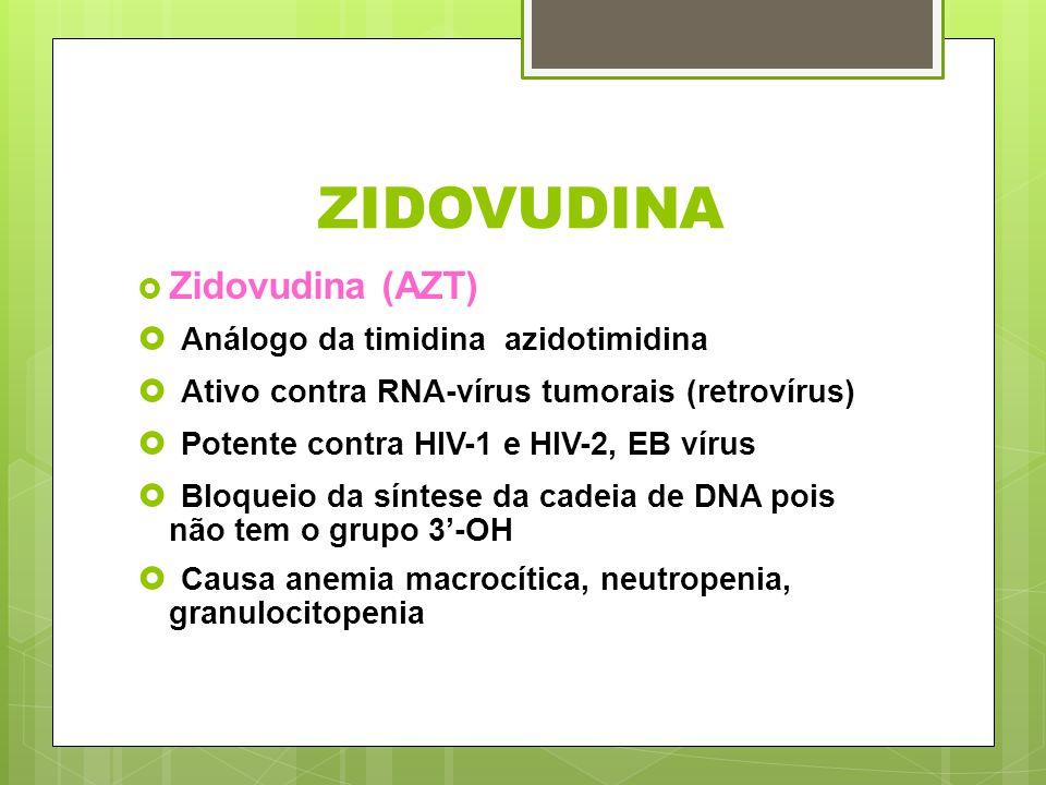 ZIDOVUDINA Zidovudina (AZT) Análogo da timidina azidotimidina Ativo contra RNA-vírus tumorais (retrovírus) Potente contra HIV-1 e HIV-2, EB vírus Bloq