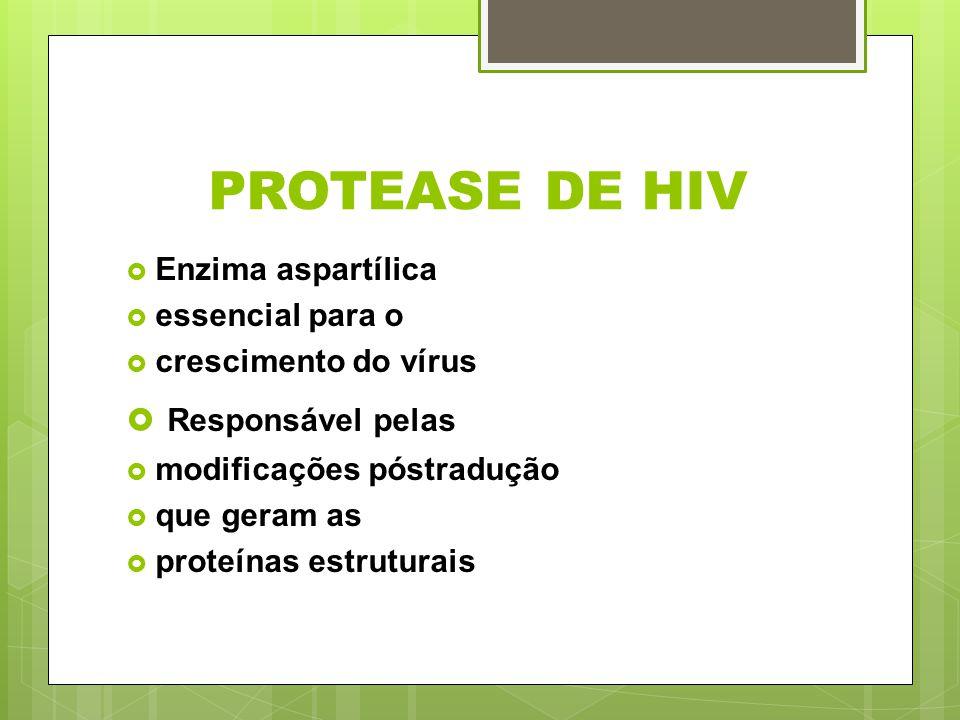 PROTEASE DE HIV Enzima aspartílica essencial para o crescimento do vírus Responsável pelas modificações póstradução que geram as proteínas estruturais