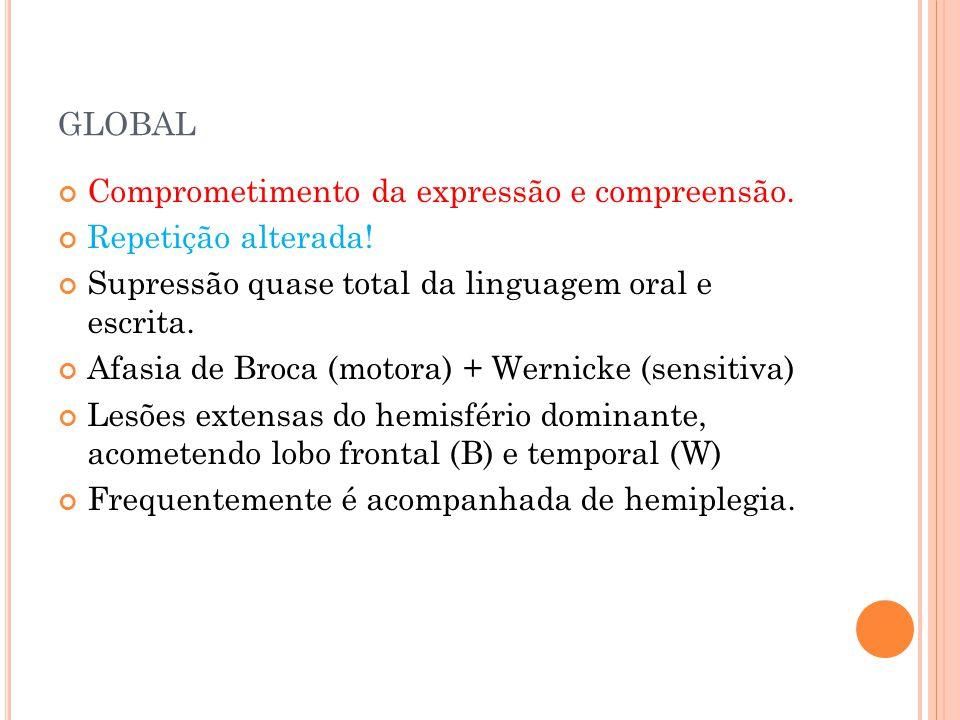 GLOBAL Comprometimento da expressão e compreensão. Repetição alterada! Supressão quase total da linguagem oral e escrita. Afasia de Broca (motora) + W