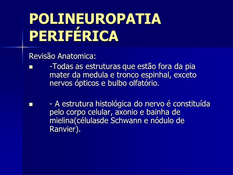 POLINEUROPATIA PERIFÉRICA Revisão Anatomica: -Todas as estruturas que estão fora da pia mater da medula e tronco espinhal, exceto nervos ópticos e bul
