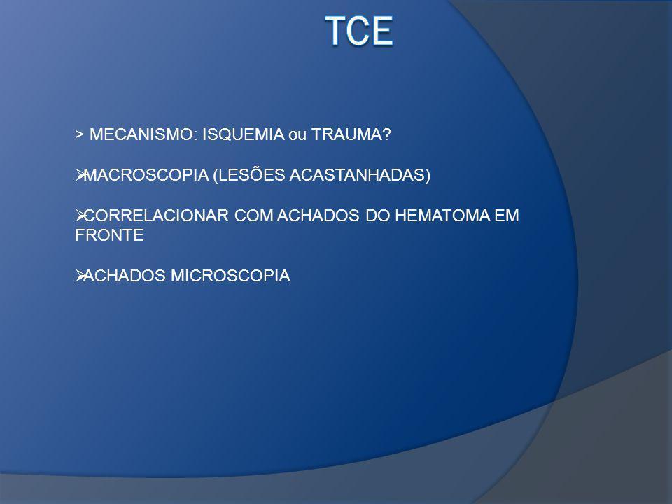 > MECANISMO: ISQUEMIA ou TRAUMA? MACROSCOPIA (LESÕES ACASTANHADAS) CORRELACIONAR COM ACHADOS DO HEMATOMA EM FRONTE ACHADOS MICROSCOPIA