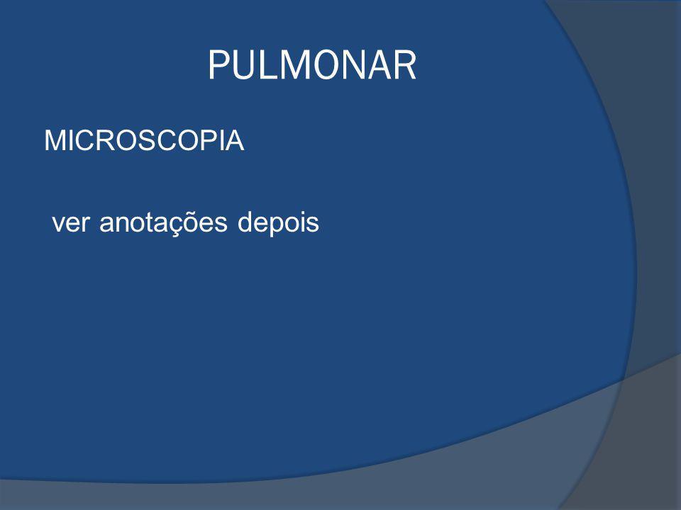 PULMONAR MICROSCOPIA ver anotações depois