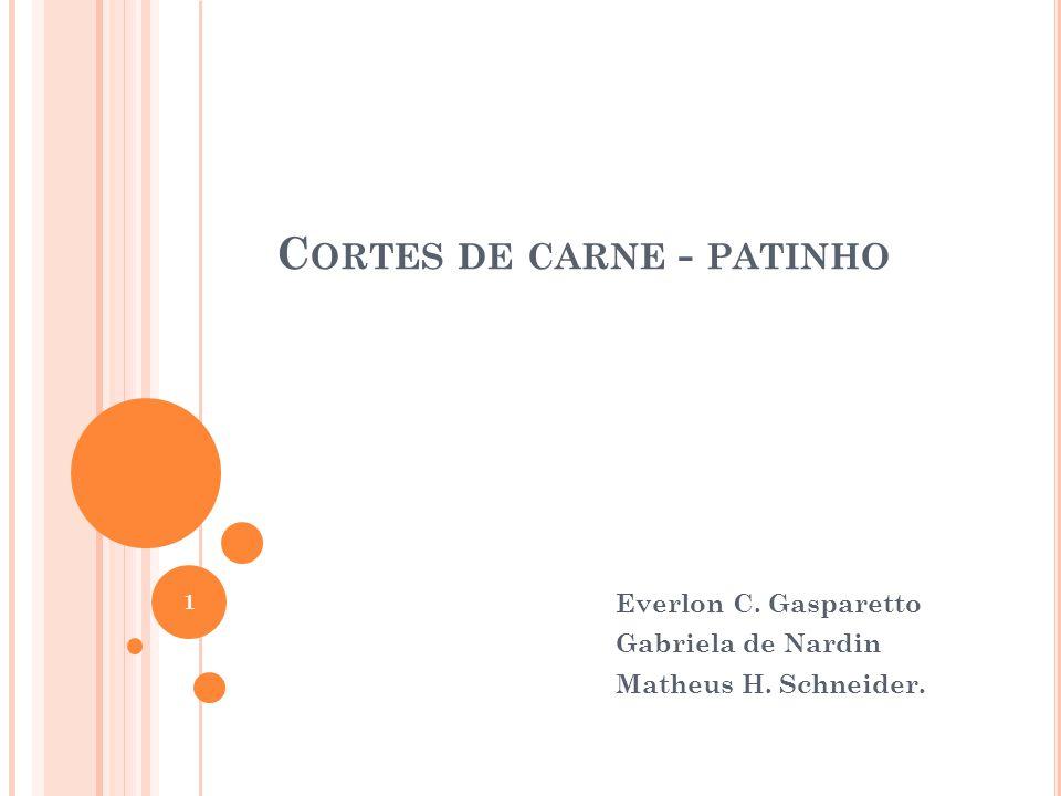 C ORTES DE CARNE - PATINHO Everlon C. Gasparetto Gabriela de Nardin Matheus H. Schneider. 1