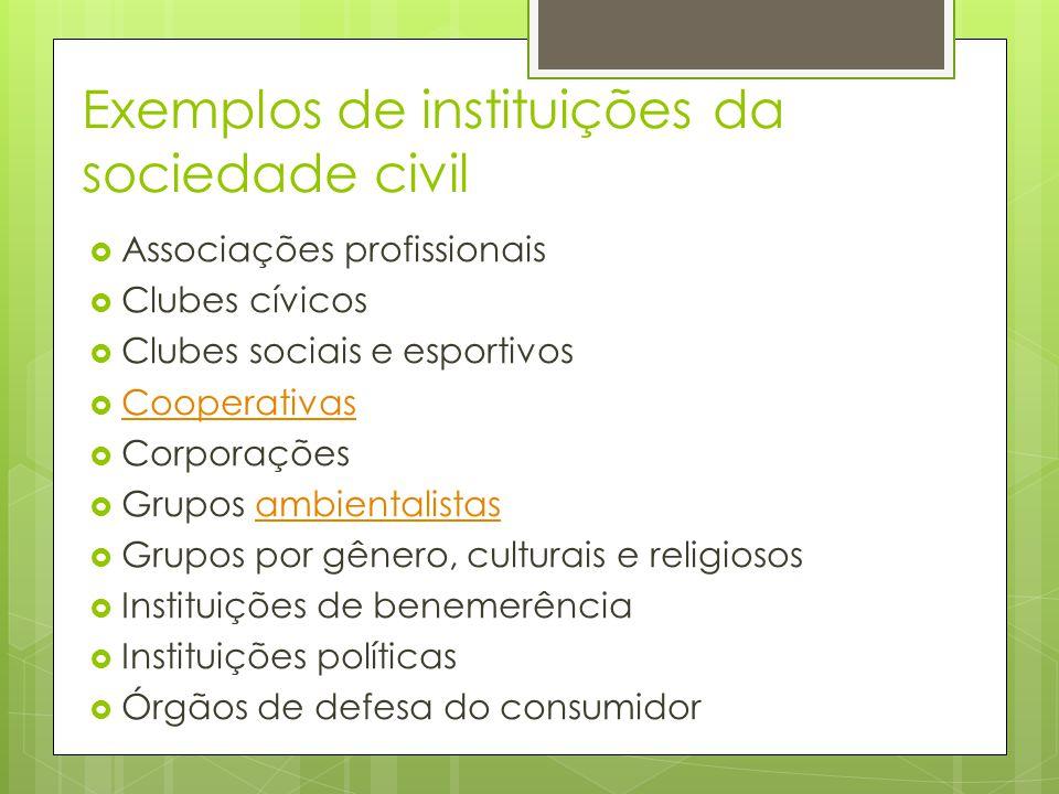 Exemplos de instituições da sociedade civil Associações profissionais Clubes cívicos Clubes sociais e esportivos Cooperativas Corporações Grupos ambie