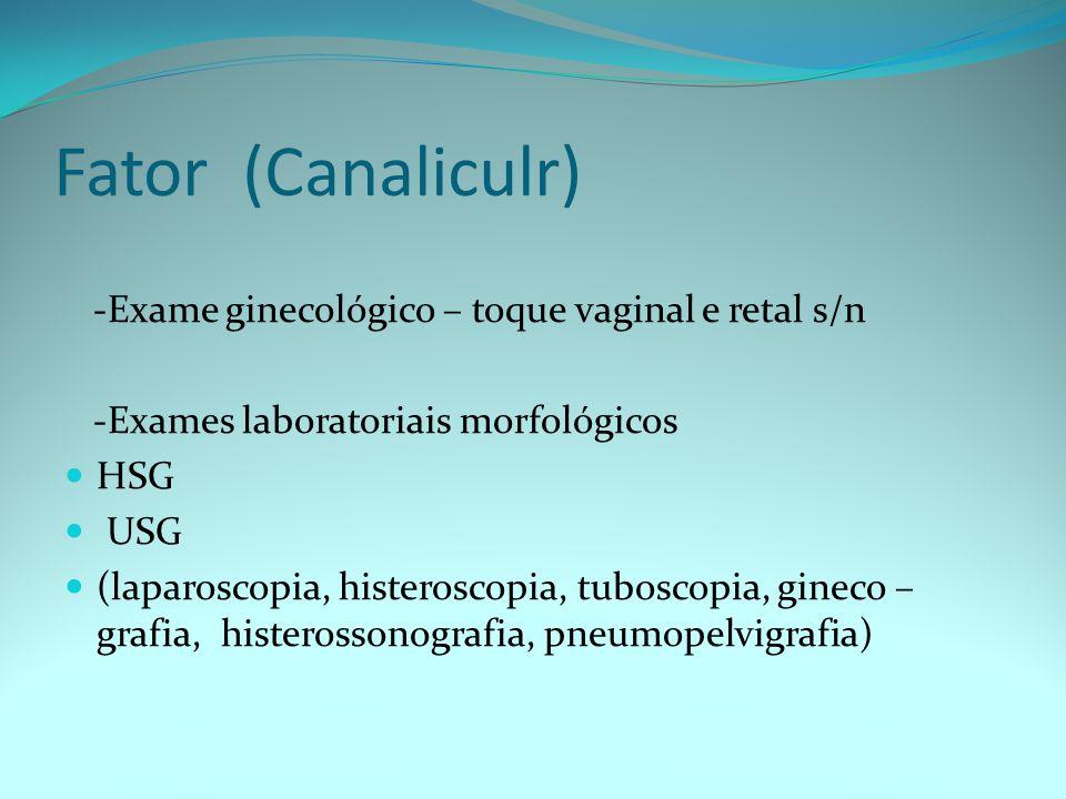 Fator (Canaliculr) -Exame ginecológico – toque vaginal e retal s/n -Exames laboratoriais morfológicos HSG USG (laparoscopia, histeroscopia, tuboscopia, gineco – grafia, histerossonografia, pneumopelvigrafia)