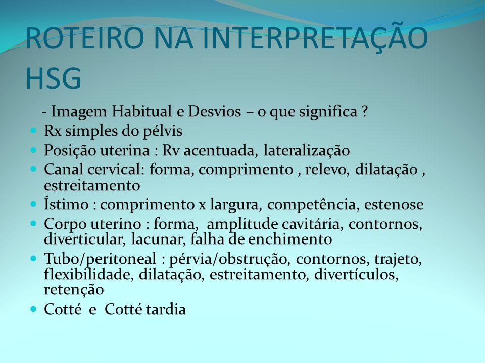 ROTEIRO NA INTERPRETAÇÃO HSG - Imagem Habitual e Desvios – o que significa .