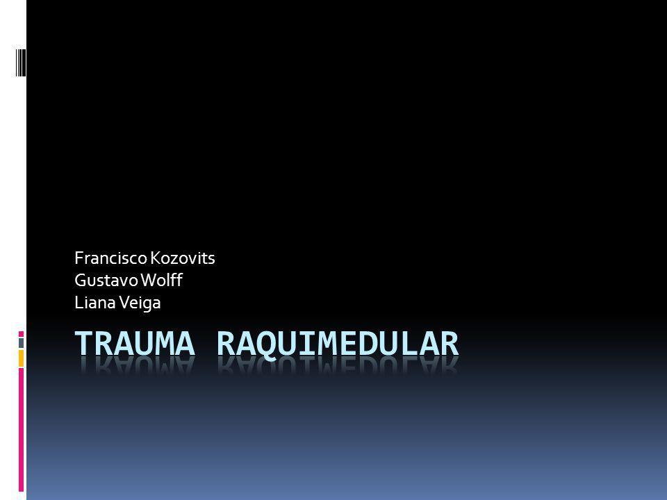Conceito, Etiologia e Epidemiologia Lesão traumática com comprometimento da função da medula espinal em graus variados de extensão.