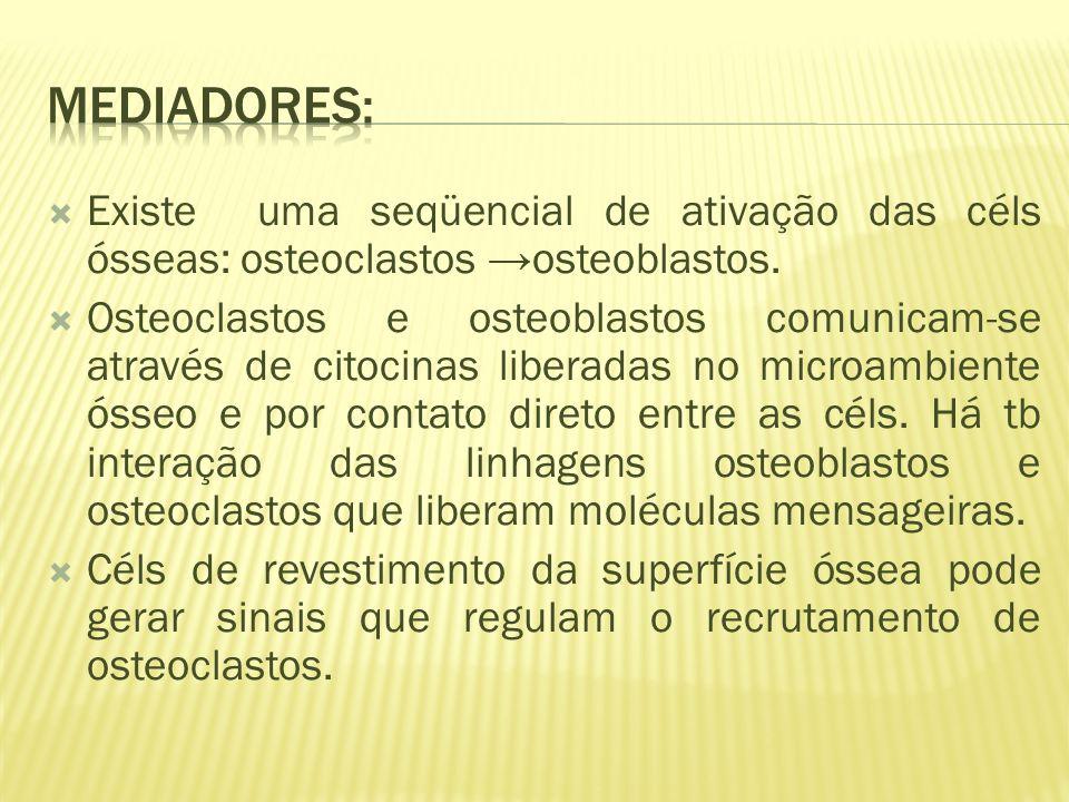 Existe uma seqüencial de ativação das céls ósseas: osteoclastos osteoblastos.