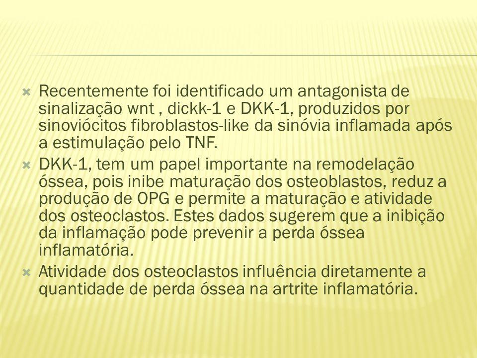 Recentemente foi identificado um antagonista de sinalização wnt, dickk-1 e DKK-1, produzidos por sinoviócitos fibroblastos-like da sinóvia inflamada após a estimulação pelo TNF.