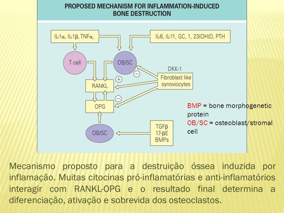 Mecanismo proposto para a destruição óssea induzida por inflamação.