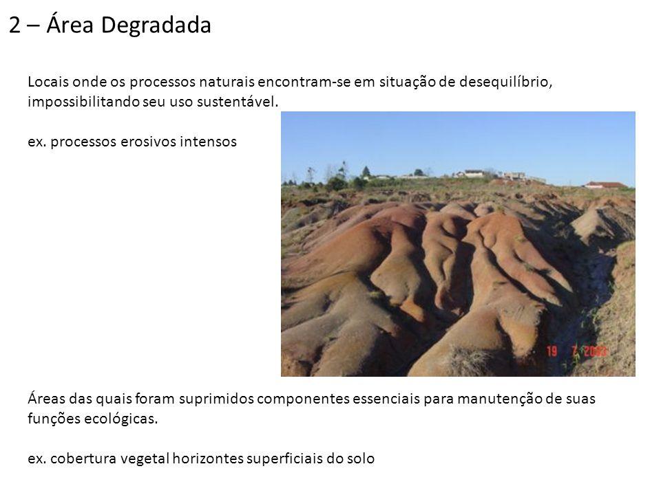 Áreas onde há presença de substâncias perigosas para a saúde humana ou os ecossistemas ex.