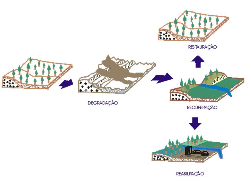 7 – NÍVEIS DE RECUPERAÇÃO AMBIENTAL a)Nível básico - prevenção de efeitos maléficos para a área ao redor do local, porém sem medidas para recuperação do local que foi minerado.