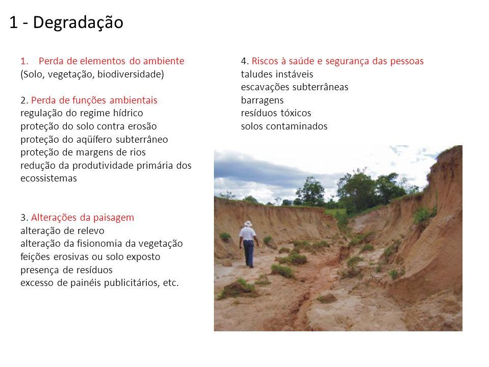 1.Perda de elementos do ambiente (Solo, vegetação, biodiversidade) 2. Perda de funções ambientais regulação do regime hídrico proteção do solo contra