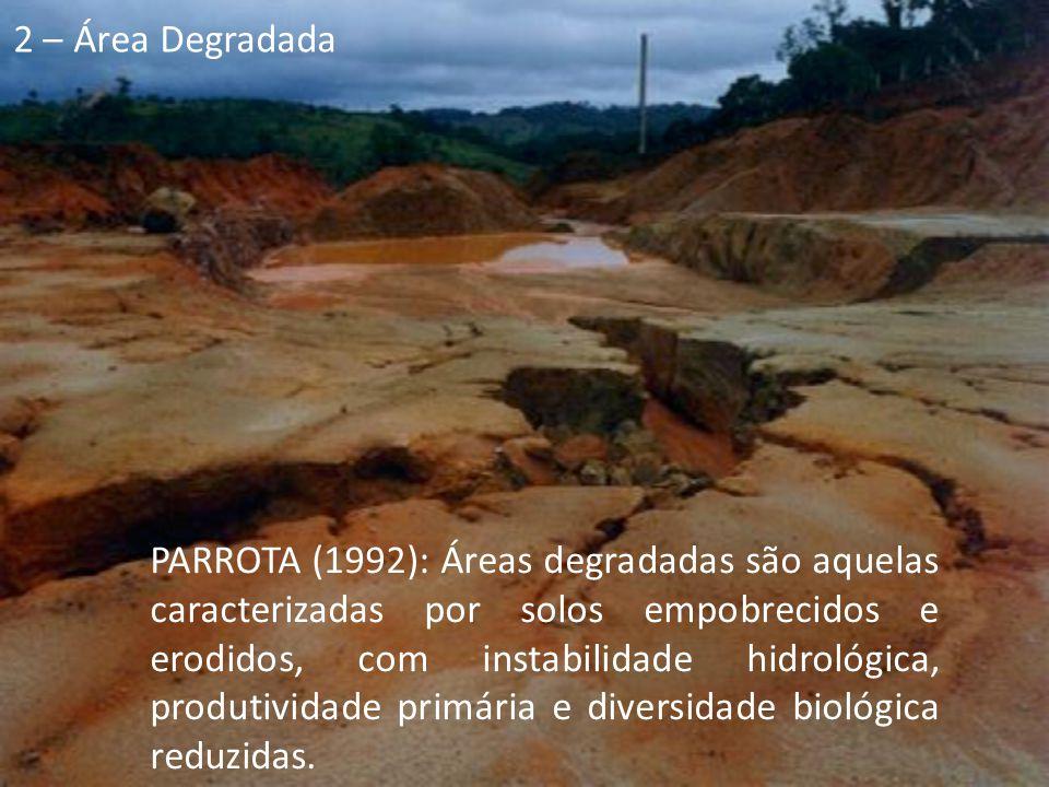PARROTA (1992): Áreas degradadas são aquelas caracterizadas por solos empobrecidos e erodidos, com instabilidade hidrológica, produtividade primária e