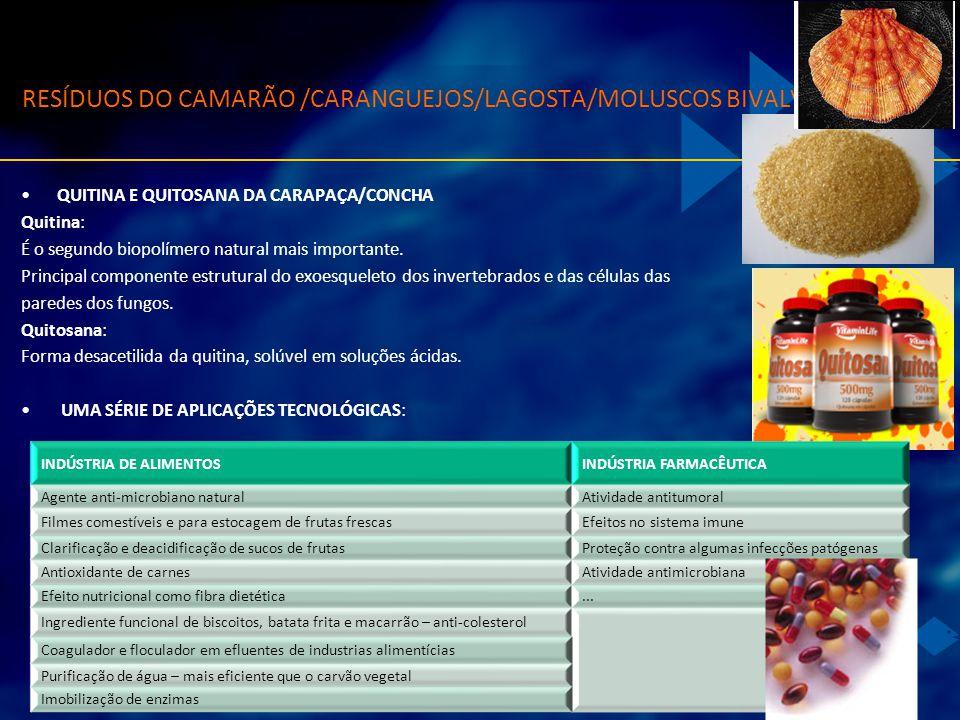QUITINA E QUITOSANA DA CARAPAÇA/CONCHA Quitina: É o segundo biopolímero natural mais importante. Principal componente estrutural do exoesqueleto dos i
