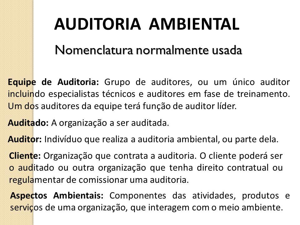 AUDITORIA AMBIENTAL Equipe de Auditoria: Grupo de auditores, ou um único auditor incluindo especialistas técnicos e auditores em fase de treinamento.