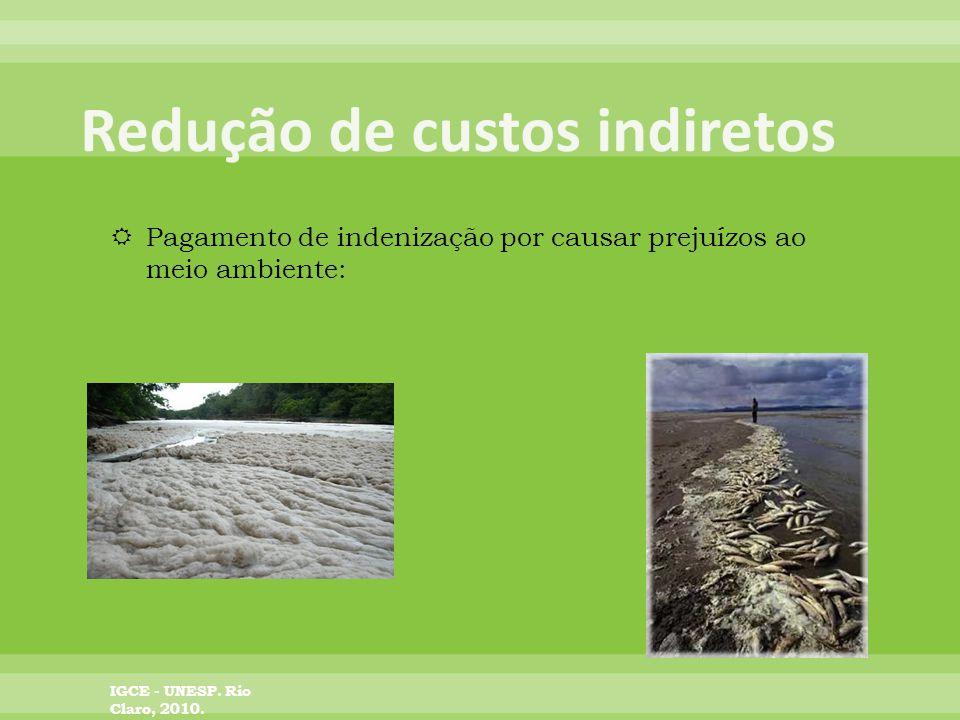 Pagamento de indenização por causar prejuízos ao meio ambiente: IGCE - UNESP. Rio Claro, 2010.