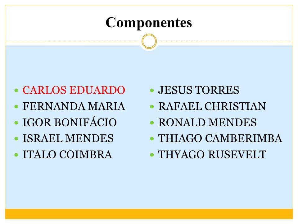 Componentes CARLOS EDUARDO FERNANDA MARIA IGOR BONIFÁCIO ISRAEL MENDES ITALO COIMBRA JESUS TORRES RAFAEL CHRISTIAN RONALD MENDES THIAGO CAMBERIMBA THYAGO RUSEVELT
