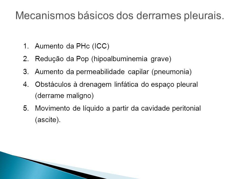 1.Aumento da PHc (ICC) 2.Redução da Pop (hipoalbuminemia grave) 3.Aumento da permeabilidade capilar (pneumonia) 4.Obstáculos à drenagem linfática do e