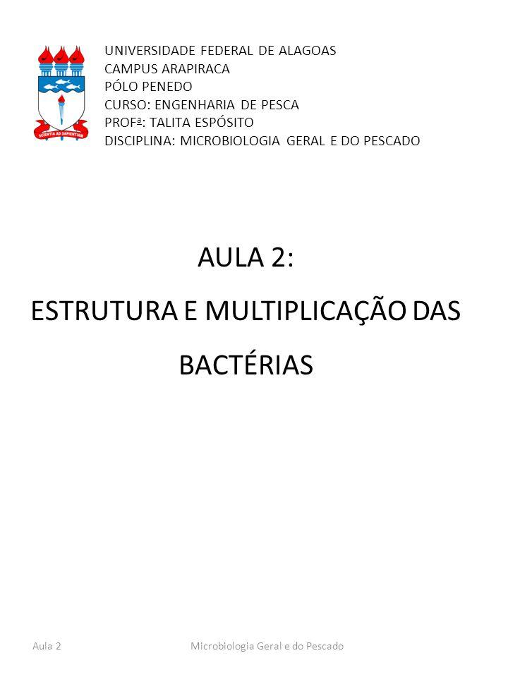 UNIVERSIDADE FEDERAL DE ALAGOAS CAMPUS ARAPIRACA PÓLO PENEDO CURSO: ENGENHARIA DE PESCA PROF a : TALITA ESPÓSITO DISCIPLINA: MICROBIOLOGIA GERAL E DO