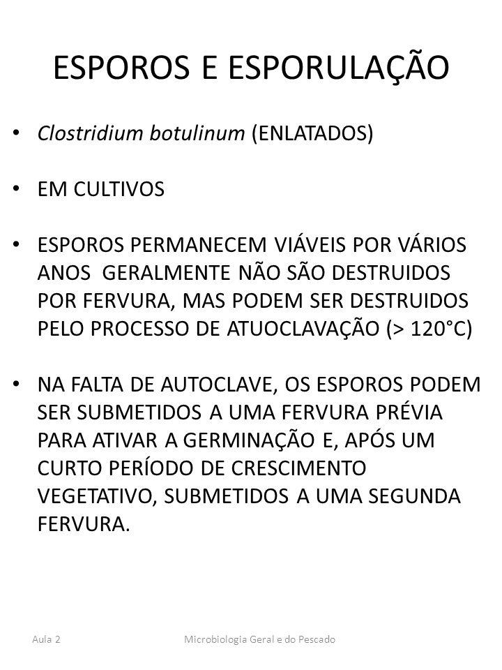 ESPOROS E ESPORULAÇÃO Clostridium botulinum (ENLATADOS) EM CULTIVOS ESPOROS PERMANECEM VIÁVEIS POR VÁRIOS ANOS GERALMENTE NÃO SÃO DESTRUIDOS POR FERVU