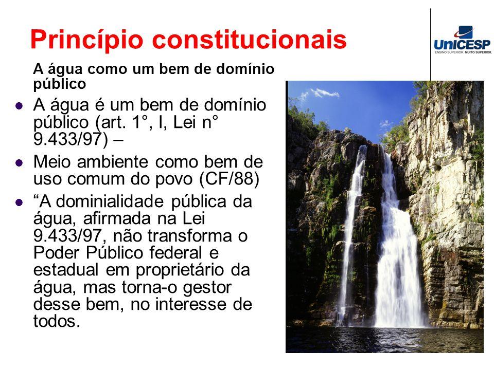 Princípio constitucionais A água como um bem de domínio público A água é um bem de domínio público (art. 1°, I, Lei n° 9.433/97) – Meio ambiente como