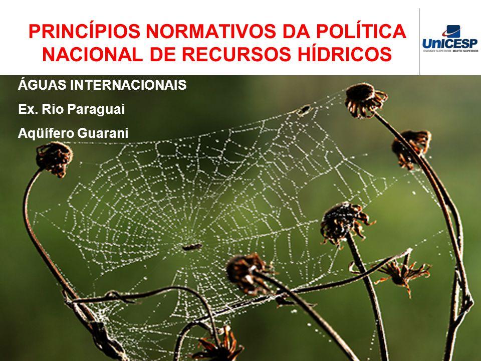PRINCÍPIOS NORMATIVOS DA POLÍTICA NACIONAL DE RECURSOS HÍDRICOS ÁGUAS INTERNACIONAIS Ex. Rio Paraguai Aqüífero Guarani