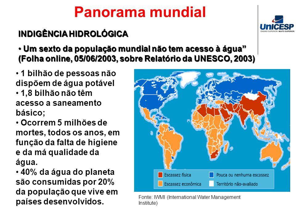 Panorama mundial Fonte: IWMI (International Water Management Institute) 1 bilhão de pessoas não dispõem de água potável 1,8 bilhão não têm acesso a sa