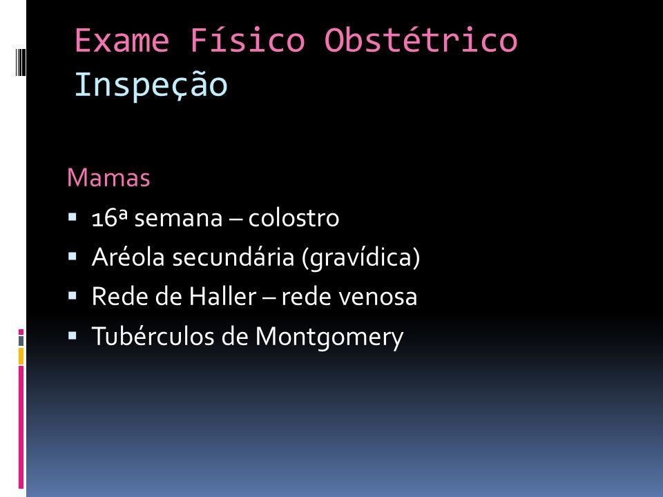 Exame Físico Obstétrico Inspeção Mamas 16ª semana – colostro Aréola secundária (gravídica) Rede de Haller – rede venosa Tubérculos de Montgomery