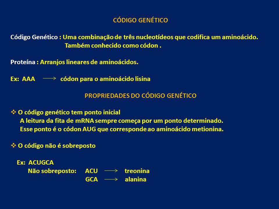 CÓDIGO GENÉTICO Código Genético : Uma combinação de três nucleotídeos que codifica um aminoácido. Também conhecido como códon. Proteína : Arranjos lin