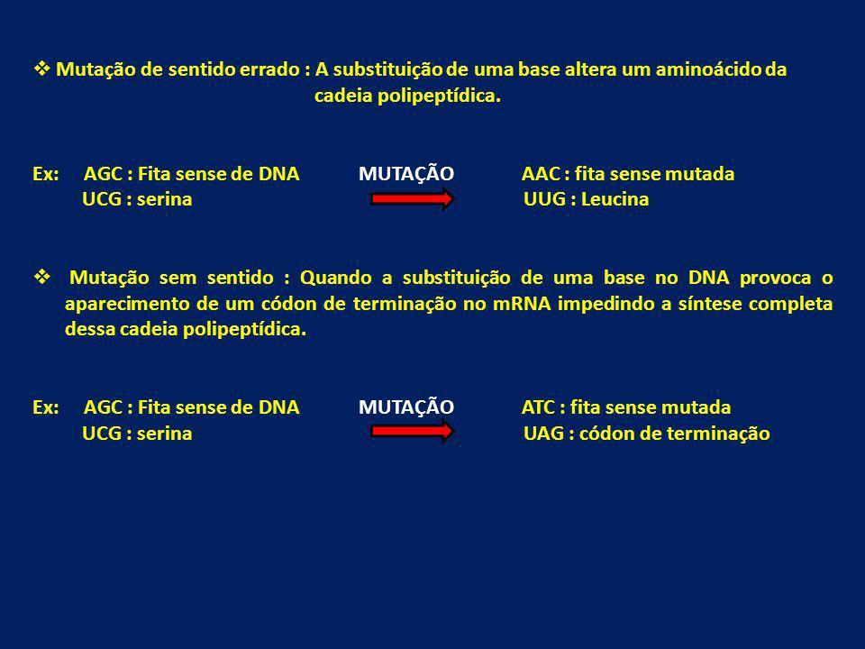 Mutação de sentido errado : A substituição de uma base altera um aminoácido da cadeia polipeptídica. Ex: AGC : Fita sense de DNA MUTAÇÃO AAC : fita se