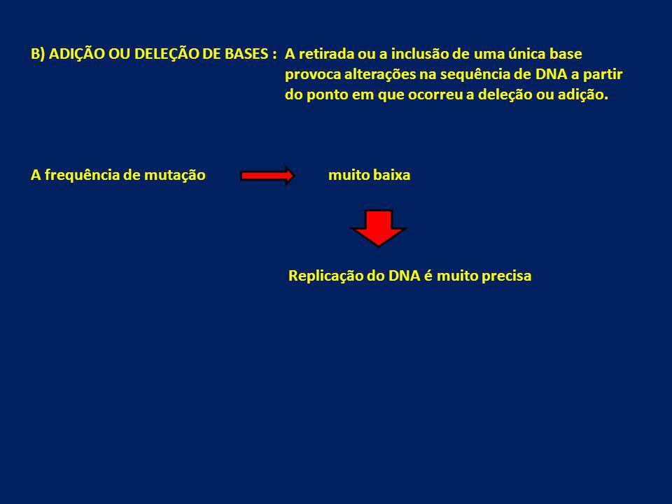 B) ADIÇÃO OU DELEÇÃO DE BASES : A retirada ou a inclusão de uma única base provoca alterações na sequência de DNA a partir do ponto em que ocorreu a d