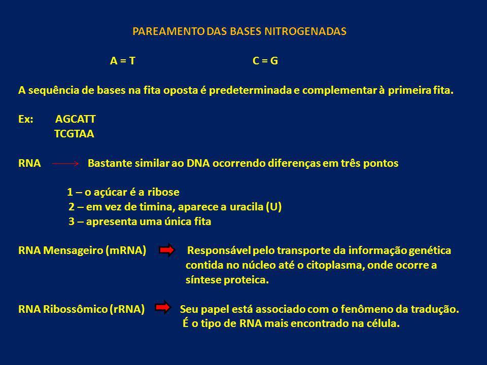 PAREAMENTO DAS BASES NITROGENADAS A = T C = G A sequência de bases na fita oposta é predeterminada e complementar à primeira fita. Ex: AGCATT TCGTAA R