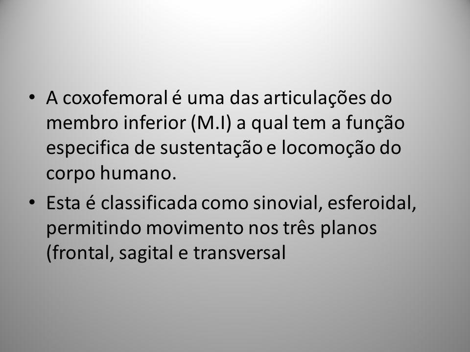 A coxofemoral é uma das articulações do membro inferior (M.I) a qual tem a função especifica de sustentação e locomoção do corpo humano.