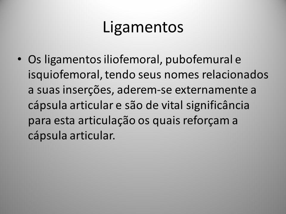 Ligamentos Os ligamentos iliofemoral, pubofemural e isquiofemoral, tendo seus nomes relacionados a suas inserções, aderem-se externamente a cápsula articular e são de vital significância para esta articulação os quais reforçam a cápsula articular.
